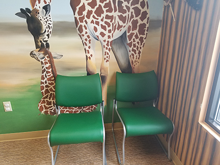 cat-waiting-room-chairs-and-doctor-stool5